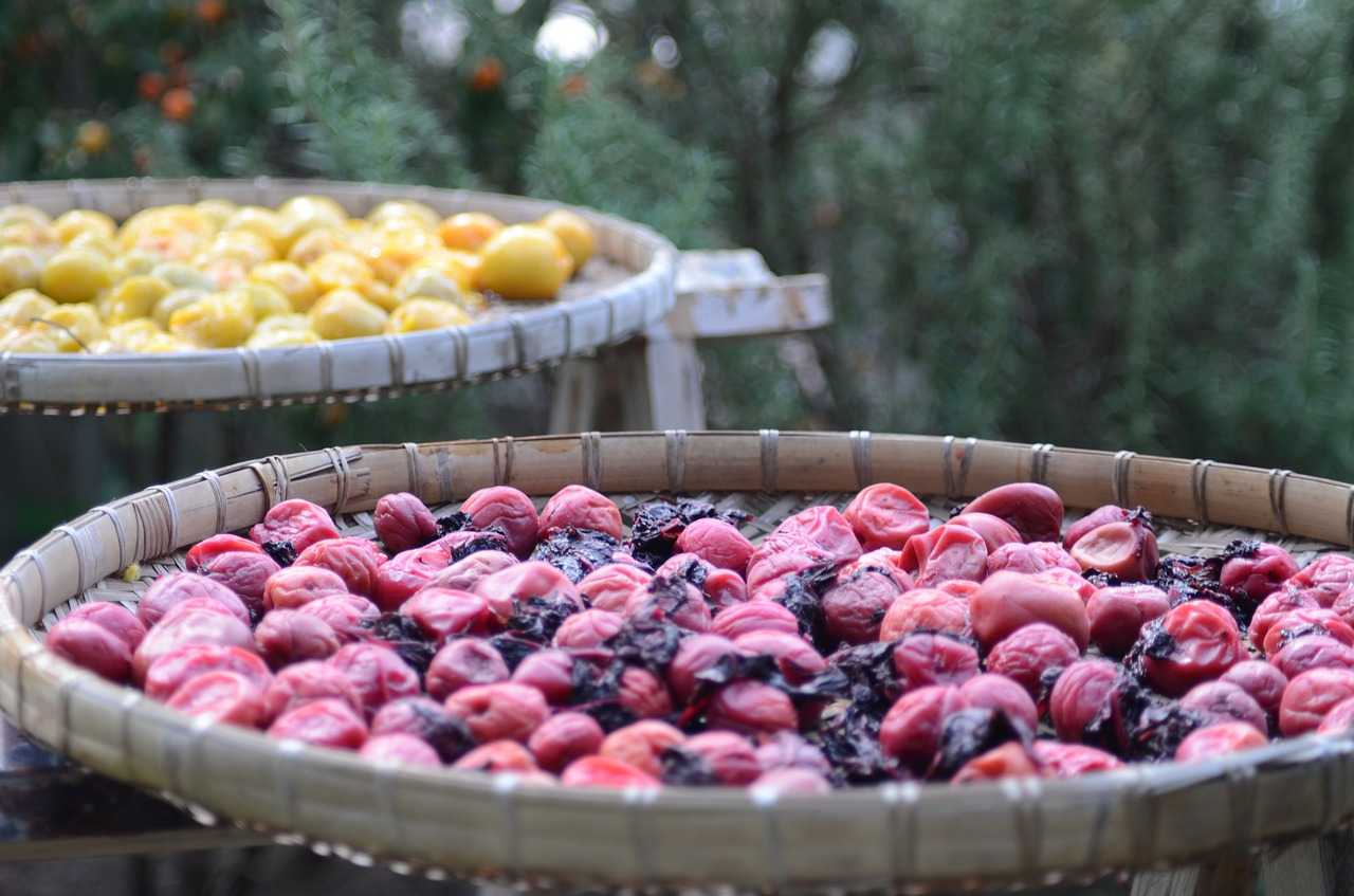 How to Make Your Own Dried Fruits