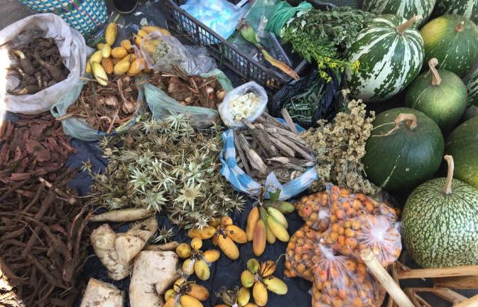 Herbs-Mexican Cuisine