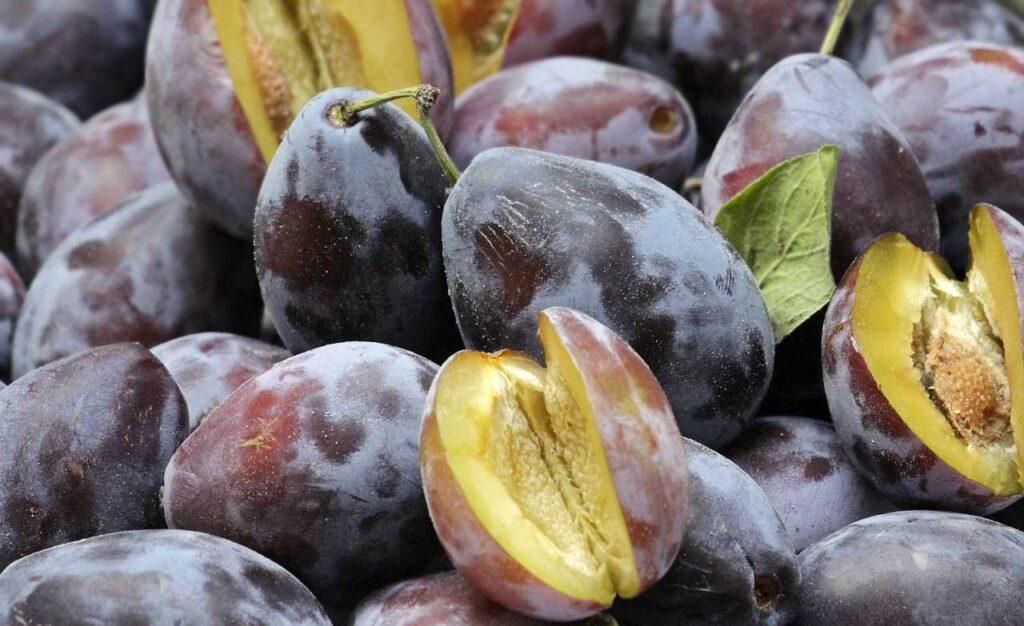 prune,fruits,abundant-potassium
